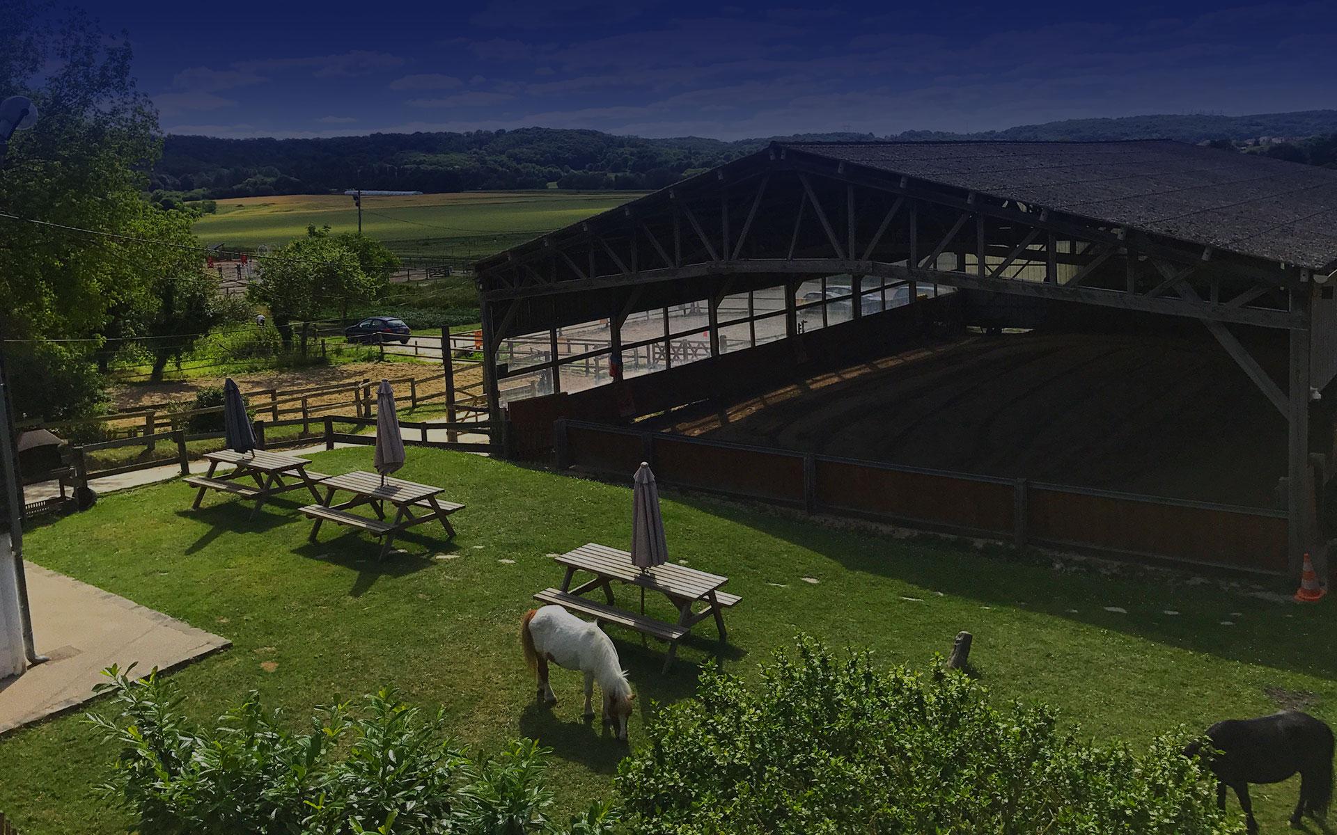 stage-club-cheval-poney-paris-2